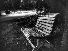 The bench (la1cna) Tags: bench monochrome bnw walking hiking ruralexplorer telemark scandinavia rural