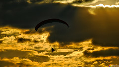 Be like a bird (Szymon Simon Karkowski) Tags: outdoor bird cloud sun fly paraglider aeroclub airport gliwice silesian voivodeship poland nikon d40x