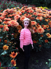Hand-Knitted Bright Light Pink Sweater for Barbie girls (uliakiev) Tags: barbie barbiedoll barbiedollclothes barbieclothes barbiesweater barbiecollector barbiecollection barbiefan barbiefashion barbieclothing barbiedolls barbieshop barbiestyle barbiestream barbiecrochet barbieknit dollclothes dollsweater dollknitting