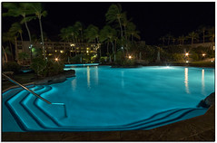 _DSD1881-aa (tellytomtelly) Tags: bigisland islandofhawaii pool swimmingpool palmtree