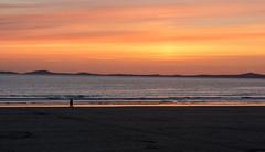 Summer Breeze.... (Matts__Pics) Tags: beach sunset stroll summer sand steps pembroke tracks