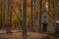 Hidden in the forest  HBM (Irina1010) Tags: forest bench mill oldmill berry autumn foliage colors beautiful peaceful outstandingromanianphotographers coth5