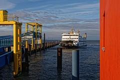 Hafen Dagebüll. (Wallus2010) Tags: dagebüll hafen fähre nordsee