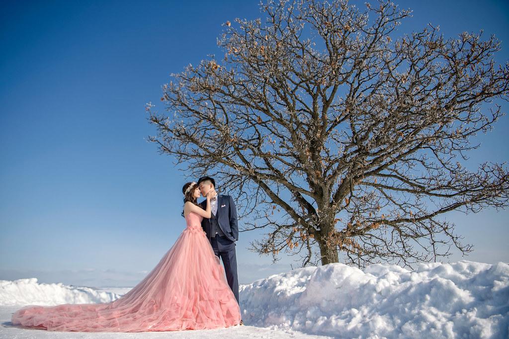 北海道婚紗 美瑛婚紗拍攝 禮服: Toris Wedding