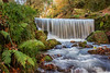 Menacuddle Well in Autumn colour (Andrew Hocking Photography) Tags: menacuddle holy well staustell cornwall autumn landscape colour waterfall long exposure explore inexplore