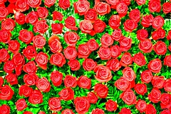Rose Wall, Present to A Woman (DigiPub) Tags: 879116480 ginza tokyo japan rose red present 銀座 スナック プレゼント 贅沢 バラ 赤いバラ ラブ 愛 夜 薔薇 night hostess