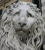 leone della cattedrale (chiara7171) Tags: genoa genova liguria cattedrale sanlorenzo cattedraledigenova visitgenoa visitliguria