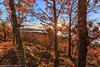 Stewarts Ledge in Fall (Samantha Decker) Tags: canonef1635mmf28liiusm canoneos6d lakegeorge ny newyork samanthadecker stewartsledge autumn fall upstate