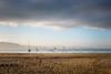 Spiaggia (Vanda Guazzora) Tags: animali finisterre spagna alba gabbiani natura spiaggia uccelli atmosfera nuvole