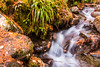 Bruar Burn (Briantc) Tags: scotland perthshire bruar forest water