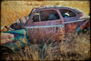 Graceful (KPortin) Tags: vintage automobile abandoned deteriorated texture htt skeletalmess weeds rustyandcrusty rusting ttt lincolncounty grass fields