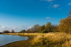 Goldene Tage (berndtolksdorf1) Tags: jahreszeiten herbst autumn wasser landschaft landscape natur outdoor