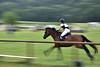 Shot from equestrian event (Touqeer Ansar) Tags: nikon nikond3400 panning riding equestrian touqeeransar touqeer ansar