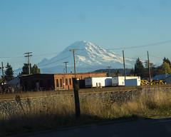 view from Auburn, Washington (wplynn) Tags: mtrainiernationalpark mountrainiernationalpark mtrainier mountrainier mt mount mountain rainier volcano volcanic washington state cascade cascaderange