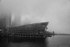Fog (Zorro1968) Tags: fog yvr vancouver photos604 canada150 canadaplace canada travel tourism architecture myportcity