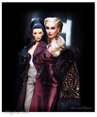 Seren and Seymour (kingdomdoll) Tags: seren kingdomdoll kingdom doll resinfashiondoll fashiondoll demetae dior seymour fashion couture hautecouture beauty resin