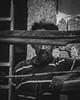 anonimo (librediscurso) Tags: street people portrait retrato venezuela calle criollo carible personas bnw blackandwhite venezuelan maracay newyork southamerica photography