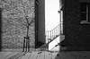 walcot square (Paul Steptoe Riley) Tags: kennington lambeth se11