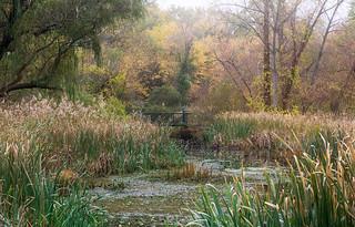 Beaver Swamp Bridge