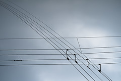 ♪♪♪♪ (Rob₊Lee) Tags: cross crossed intersection cables leading wave waves wavelength lines note notes music broadcast frequency network sky clouds air ♪