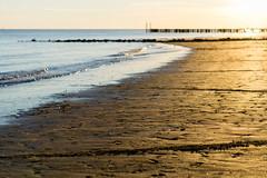 At the Beach in Zoutelande, Zeeland, Netherlands (marshallmar78) Tags: netherlands zeeland zoutelande beach sunset eveningsun vacation