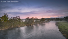The River Eden (.Brian Kerr Photography.) Tags: cumbria lazonby mistymorning rivereden sunrise outdoorphotography a7rii sony formatthitech briankerrphotography edenvalley
