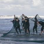 Neptun Run Oostende thumbnail