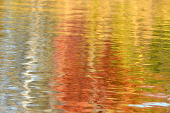 Some Colors (NaturalLight) Tags: fall autumn color reflections water pond chisholmcreekpark wichita kansas