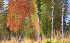 Water Park (chantsign) Tags: water reflection waterreflection colors fall autumn waves movement explore