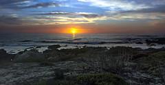 Asilomar_20171009_123_300dpi (brian.roanhorse) Tags: asilomar state beach sunset monterey baay california pacific