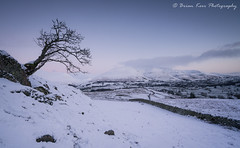 A View Of Blencathra (.Brian Kerr Photography.) Tags: cumbria lakedistrict landscapephotography lakes lakelanders tree blencathra saddleback snow snowing winter cold coldmorning predawn sony a7rii weather briankerrphotography briankerrphoto nature naturallandscape natural outdoor outdoorphotography opoty formatthitech tewettarn coldblue landscape sky mountain