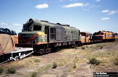 2871 XB1027 Z1151 X1031 Midland Workshops14 March 1982 (RailWA) Tags: railwa philmelling westrail 1982 xb1027 z1151 x1031