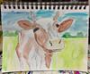 """Moo"" (BKHagar *Kim*) Tags: bkhagar art artwork sketch watercolor 2minutes fast quickdrawing pencil cow moo bovine"