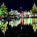 """Light Up DT, Tree Lighting Ceremony <a style=""""margin-left:10px; font-size:0.8em;"""" href=""""http://www.flickr.com/photos/125384002@N08/38641797001/"""" target=""""_blank"""">@flickr</a>"""