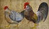 PINTURA NA TÁBOA (Calile) Tags: galo e galinha