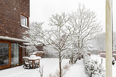 het gaat door ... (doevos) Tags: chickwood hoenderloo hogeveluwe nederland sneeuw veluwe winter snow