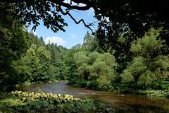 Ilzschleife (r3nk.de) Tags: wasser flus river nature natur ilz geotag