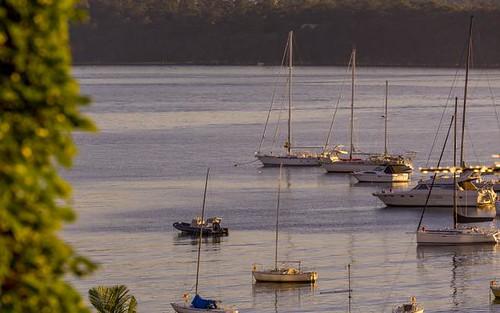 3/10 Onslow Av, Elizabeth Bay NSW 2011