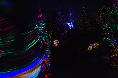 DSC_0583 (Michael Dees) Tags: seattle colro theory long exposure night photography retro futurism wildights zoolights neon neopop color