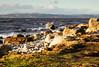 Morecambe Bay Shore at Hest Bank (kenemm99) Tags: landscape winter 5dmk3 morecambebay sea canon shore places kenmcgrath