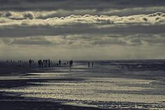 Texel (wjpostma) Tags: texel paal20 strand beach sea noordzee merdunord noardsee northsea nordsee teksel tessel playa plage