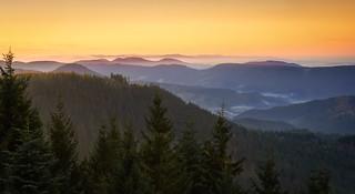 Dawn in the woods - Schliffkopf, Germany