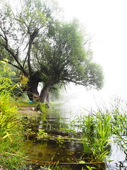 Oderbruch - Alt-Küstrinchen / Stary Kostrzynek (Pixel-Cat) Tags: oder fluss strom river stream morgen morning morgennebel morningfog ufer shore landschaft landscape countryside wasser water altküstrinchen starykostrzynek polen poland olympus omd em5 sooc mzuiko1250mm13563iiez