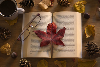 Autumn reading// Lectura de otoño