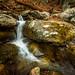 Cedar Run. Shenandoah National Park