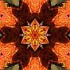 Kaleido Abstract 1670 (Lostash) Tags: art photography edited kaleidoscopes patterns shapes symmetry