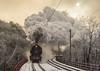 Steam sun | 498.104 | BA - Železná studienka | 2.12.2017 (lofofor) Tags: steam albatros 498 104 para ba bratislava červený most červenýmost sneh zima mikuláš protisvetlo železnástudienka