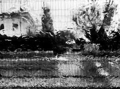 """Distortions"" (giannipaoloziliani) Tags: raw photoart sagome stilizzato astratto abstract stylized casa albero italy lights shadows ombre house tree shapes flickr nikon capture rain water glass alterations distortions deformations darkness dark blackandwhite biancoenero monochrome monocromatico"