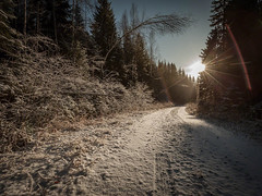20171115003581 (koppomcolors) Tags: koppomcolors winter snow snö vinter värmland varmland sweden sverige scandinavia