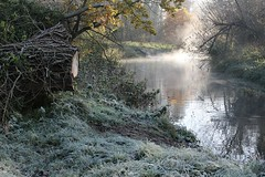 Thetford (A Picture Of Norfolk) Tags: thetford littleouse river norfolk autumn morning mist frost
